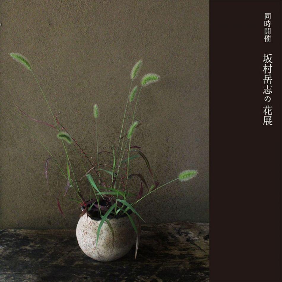 花のうつわ5